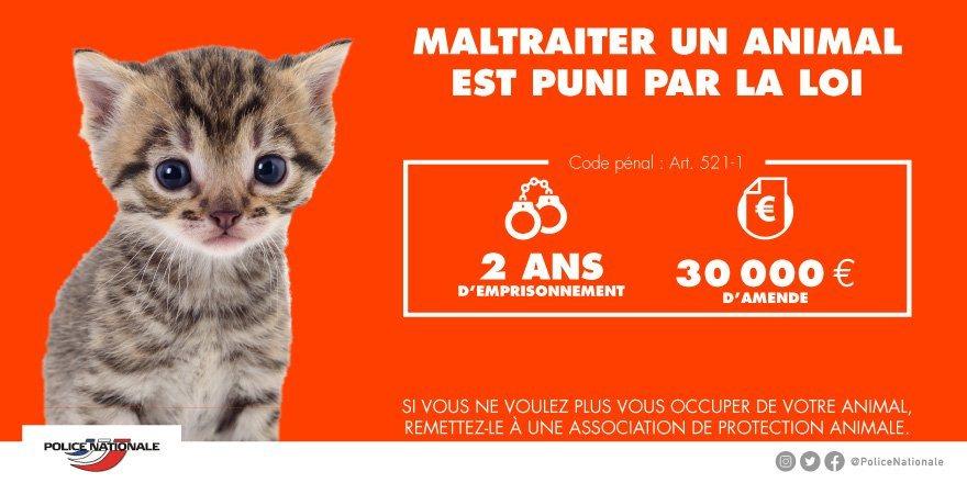 Benevole Dans AME Des Tunisiens Du Loiret